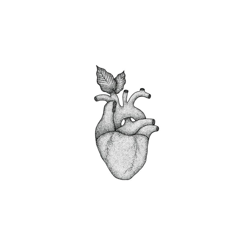 Heart Illustration, 2017